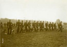 France Longchamp Défilé Militaire Chiens Sanitaires 14 Juillet Ancienne Photo 1913 - War, Military
