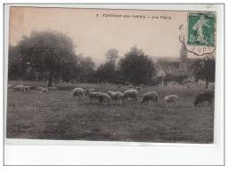 FONTENAY EN PARISIS - Une Prairie - Très Bon état - Autres Communes