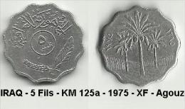 IRAQ - 5 Fils - KM 125a - 1975 - XF - Agouz Was 13 - Iraq