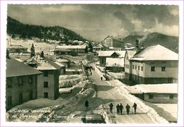 M6626 FRIULI VENEZIA GIULIA Tarvisio Udine 1954 VIAGGIATA - Other Cities