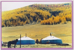 Visit To Mongolia - Yurten - A Golden Autumn - Photo By Ya. Narmandakh 2002 - Mongolie