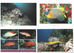 Maldiven - Maldives - 4 Cards - Atoll - Unterwasser - Underwater - Fish - Fisch - Nice Stamps - Maldiven