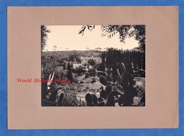 Photo Ancienne Collée Sur Carton - ALGER , Algérie - Maison Arabe Route Du Beau Fraisier - 1950 - Africa