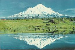 Modern Picture Postcard - New Zealand - Mt Egmont, Taranaki - Unused - MPC 598 - Postcards