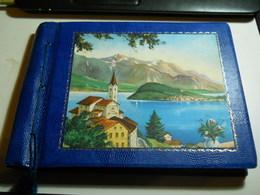 Family Album (29x21cm) Very Photographs * All Photographed - Albumes & Colecciones