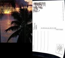 569816,Sunrise At Cape Tribulation North Of Cairns North Queensland Australien Austra - Ansichtskarten