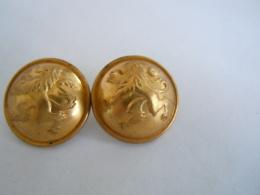 Belgie Belgique 2 Knopen Boutons Leeuw Lion Couleur D'oré  Goudkleur 2,2 Cm - Buttons