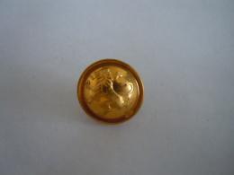 Belgie Belgique Knoop Bouton Leeuw Lion Couleur D'oré  Goudkleur 1,7 Cm - Buttons