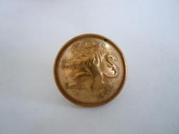 Belgie Belgique Knoop Bouton Leeuw Lion Couleur Bronze Bronskleur  2,2 Cm - Buttons
