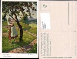 569357,Künstler AK O. Kubel Brüder Grimm Märchen Apfelbaum Baum - Märchen, Sagen & Legenden