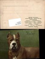 569371,Künstler AK Hund Wales - Hunde