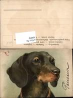 569372,tolle Künstler AK Hund Dackel Portrait - Hunde