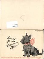569375,Österreichischer Tierschutzverein Jugendblaukreuz Hund Atelier Wiener - Hunde