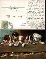 569377,Künstler AK Hund Hunde Pub Theo Stroefer 672 - Hunde