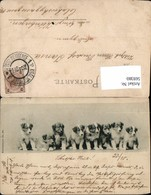 569380,Künstlerkarte No. 450 Hunde Hund Stp. Königlich Weinbergen - Hunde