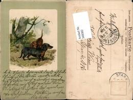 569382,Präge Lithographie C.F. Deiker Dackel Hund Hunde - Hunde