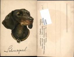 569383,tolle Künstler AK Dackel Hund - Hunde