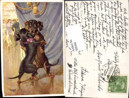 569394,tolle Künstler AK Vermenschlichte Dackel Hunde Tanzen Tango Humor Scherz - Hunde