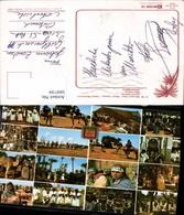 569739,Mehrbild Ak Morocco Marokko Kamele Volkstypen Zelt - Marokko