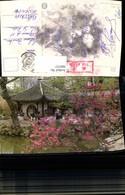 569757,Suzhou Humble Administrators Garden China Blütenstrauch Pavillon - China