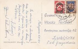 2756   AK-- ALGERIE    MOSTAGANEM   ORAN    -LJUBLJANA - Algeria (1924-1962)