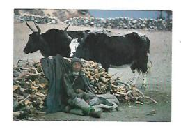 THAME - Nepal