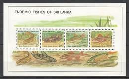 M715 SRI LANKA FISH & MARINE LIFE ENDEMIC 1KB MNH - Poissons