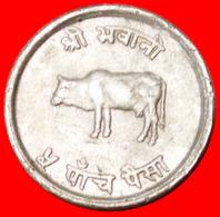 # SUN & MOON: NEPAL ★ 5 PAISA 2028 (1971) COW! LOW START ★ NO RESERVE! Mahendra Bir Bikram (1955-1972) - Nepal