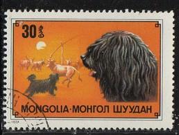 PIA  -1978 :  MONGOLIA  - Razze Di Cani - Cane Puli - (Yv 975) - Mongolia