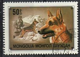 PIA  -1978 :  MONGOLIA  - Razze Di Cani - Pastore Tedesco - (Yv 977) - Mongolia