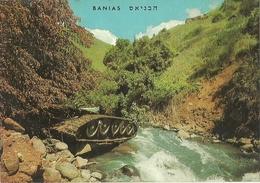BANIAS RIVER JORDAN ISRAEL - Israel