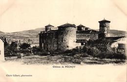 CHATEAU DE PECHOT -63- - Autres Communes