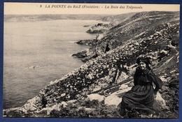 29 CLEDEN-CAP-SIZUN La Baie Des Trépassés ; Ilienne - Animée - Cléden-Cap-Sizun