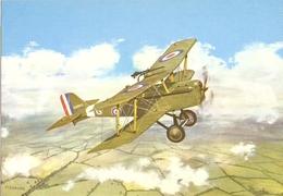 CP Avion Biplan S.E.5 Du 56 Squadron R.A.F. - Grande-Bretagne - Guerre 1914-18