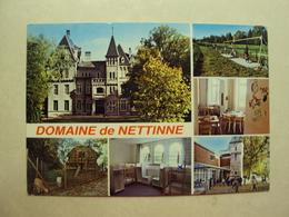 29291 - WATERMAAL BOSVOORDE - DOMEINE DE NETTINNE - ZIE 2 FOTO'S - Watermaal-Bosvoorde - Watermael-Boitsfort