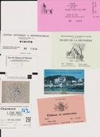 Lot 7 Tickets Hétéroclites Entrées Musées, Châteaux Chambord, Montreuil-By, Amboise, Gizeux ânes, Val De Loire, Valençay - Biglietti D'ingresso