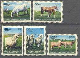 Turquie, Yvert 1699/1703, Scott B98/102, MNH - 1921-... Republic