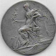 SOREZE - Médaille Association Sorezienne - Cinquantenaire 1882 - 1932 - France