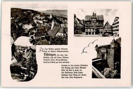 52827074 - Tuebingen - Tuebingen