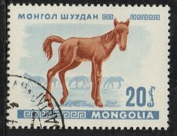 PIA  -1968 :  MONGOLIA  - Giovani Animali : Puledro - (Yv 429) - Mongolia