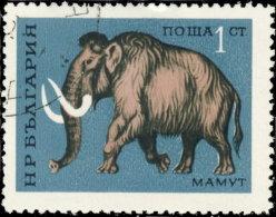 Bulgarie 1971. ~ YT 1860 - Animal Préhistorique. Elephas Primigenius - Gebraucht