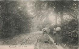 Westmalle Dans Le Bois - Autres
