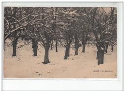 CORTE - Un Sous Bois - état - Corte