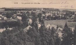 LIBIN / VUE GENERALE DE LIBIN BAS / GUERRE 1914-18 /  FELDPOST - Libin