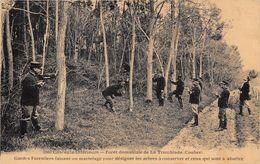 17-FORÊT DOMANIELE DE LA TREMBLADE ( COUBRE) GARDES FORESTIERS FAISANT UN MARTELAGE POUR DESIGNER LES ARBRES .... - France