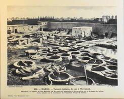 """MAROC - N°234 - Tannerie Indig. De Cuir à MARRAKECH- Collection """"Pour L'Enseignement Vivant"""" - Colonies Françaises - TBE - Collections"""