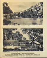 """OUBANGHI-CHARI - N°239 Route De BANGUI-BATANGOFO - Collection """"Pour L'Enseignement Vivant"""" - Colonies Françaises - TBE - Collections"""