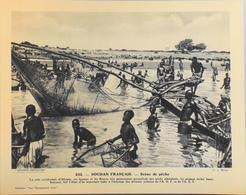 """SOUDAN FRANCAIS - N°242 Scène De Pêche - Collection """"Pour L'Enseignement Vivant"""" - Colonies Françaises - TBE - Collections"""