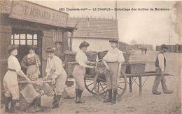 17-LE CHAPUS- EMBALLAGE DES HUITRES DE MARENNES - France