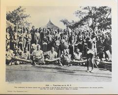 """A.O.F. - N°244 Tam-Tam En AOF - Collection """"Pour L'Enseignement Vivant"""" - Colonies Françaises - TBE - Collections"""